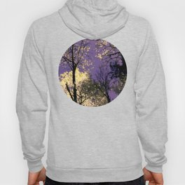 Lost in Admiration Hoody