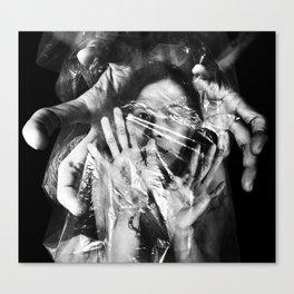 Conceal Canvas Print