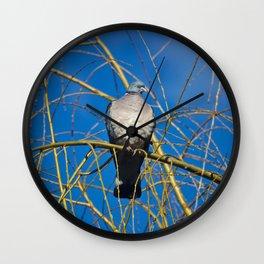 Pigeon Perch Wall Clock