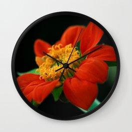 Orange Beauty Wall Clock