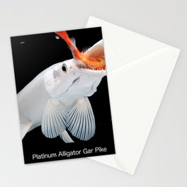 Platinum Alligator Gar Pike Stationery Cards