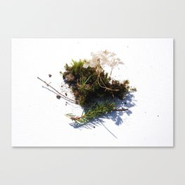 Eating dirt Canvas Print