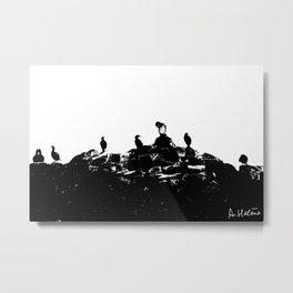 Birds on the shore Metal Print