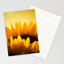 Sunflower Rise Stationery Cards