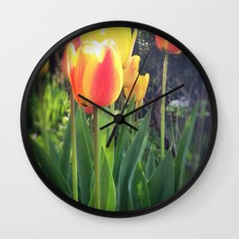 Spring Tulips in Bloom Wall Clock