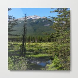 Beautiful Bow Valley Metal Print