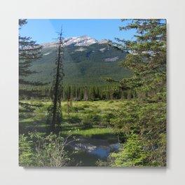 Beautiful Bow Valley Metal Print