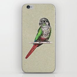 Green-cheeked conure iPhone Skin