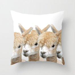 Alpaca Line Up Throw Pillow