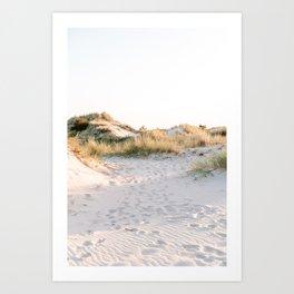 Golden Dunes   Calm Sand Dunes Netherlands Print Art Print