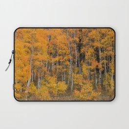 Colorful Idaho Forest Laptop Sleeve