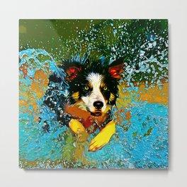 border collie jumping in water vector art Metal Print