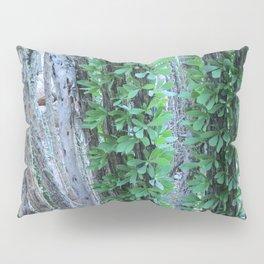 Ocotillo Fence Pillow Sham