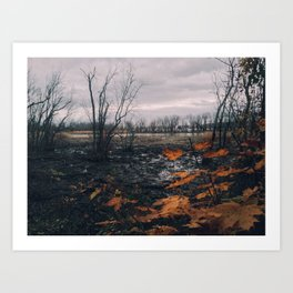 Dyke Marsh Wildlife Preserve Art Print