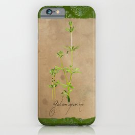 Herbal Apothecary: Cleavers iPhone Case