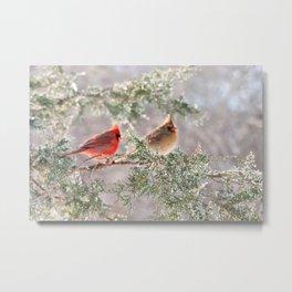 Hoarfrost Cardinals Metal Print