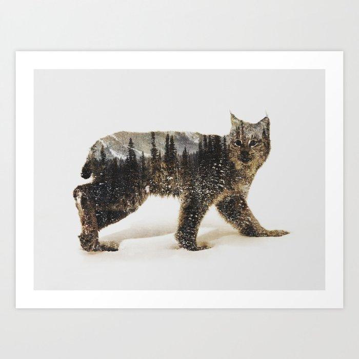 Arctic Lynx Kunstdrucke