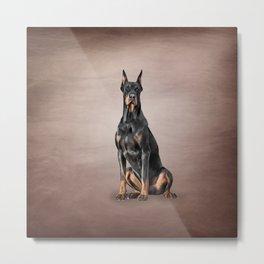 Drawing Doberman dog Metal Print