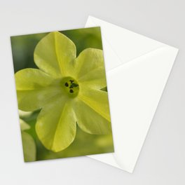 Pale Yellow Flower Stationery Cards
