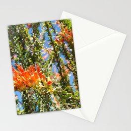 Orange Ocotillo Cactus Stationery Cards