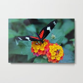 Wild for You Metal Print