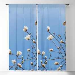 First to Bloom - Magnolia Flower Photography Blackout Curtain