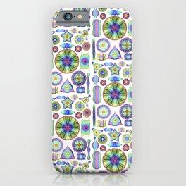 Ernst Haeckel Rainbow Diatoms iPhone Case