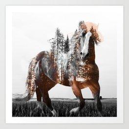 Sunset Rider Art Print