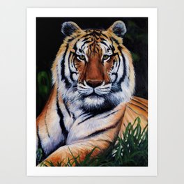 "'Tigers Eyes"" Art Print"