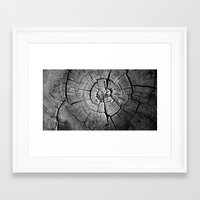 tree rings Framed Art Prints featuring Rings by Jacob Haynes