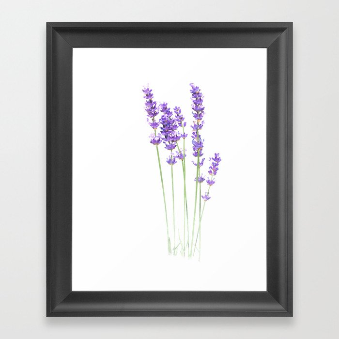Lavender Gerahmter Kunstdruck