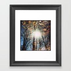 North 13 Framed Art Print