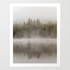 trees in the morning mist Art Print