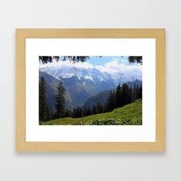 Swiss Alps View Framed Art Print