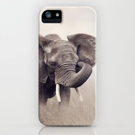African Elephant walking in the grassland iPhone Case