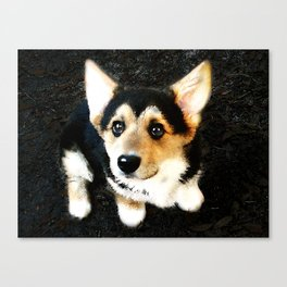 Please? Canvas Print