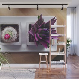 Succulent Potted Plant Wall Mural