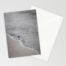 Lonely Sandpiper Stationery Cards
