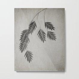 oat grass Metal Print