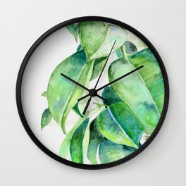 Ficus elastica watercolor hand painted art Wall Clock