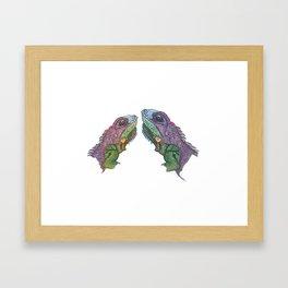 Iguana kisses Framed Art Print
