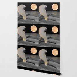 Umbrella Cockatoo on a Moonlit Beach A242 Wallpaper