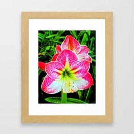 Sparkle Your Life Framed Art Print