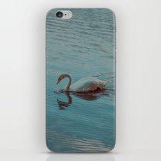 Swan lake in blue iPhone & iPod Skin