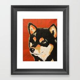 Kuma the Shiba Framed Art Print