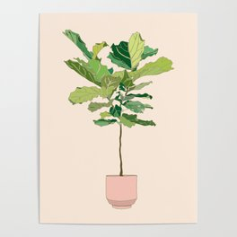 Fiddle Leaf Fig Poster