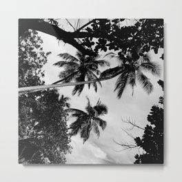 Third tree Metal Print