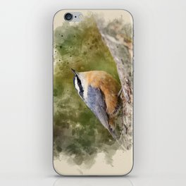 Nuthatch Watercolor Art iPhone Skin