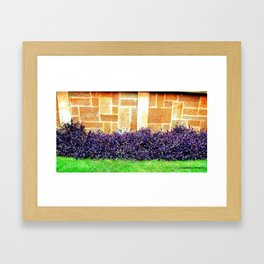 Imperial Garden Framed Art Print
