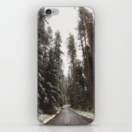 Redwood Forest Adventure II - Nature Photography iPhone Skin